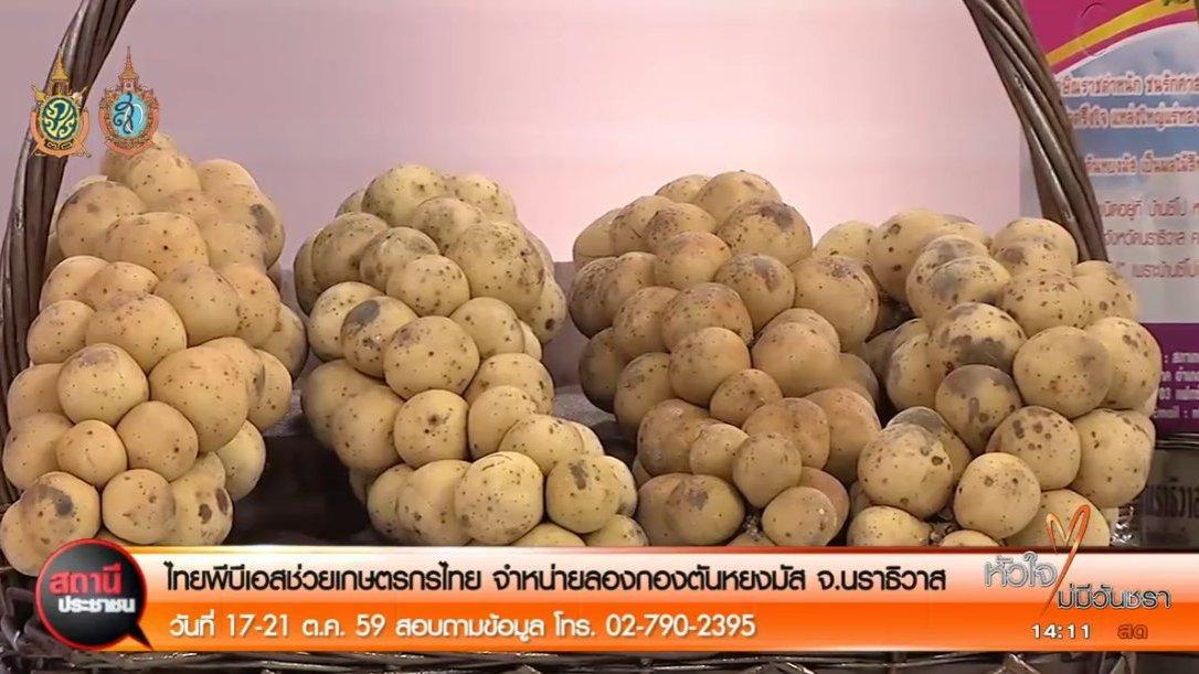 สถานีประชาชน - สถานีประชาชน : ไทยพีบีเอสช่วยเกษตรกรไทย จำหน่ายลองกองตันหยงมัส จ.นราธิวาส