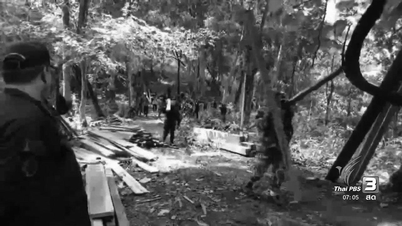 วันใหม่  ไทยพีบีเอส - เปิดยุทธการทวงคืนผืนป่าเพื่อพ่อ