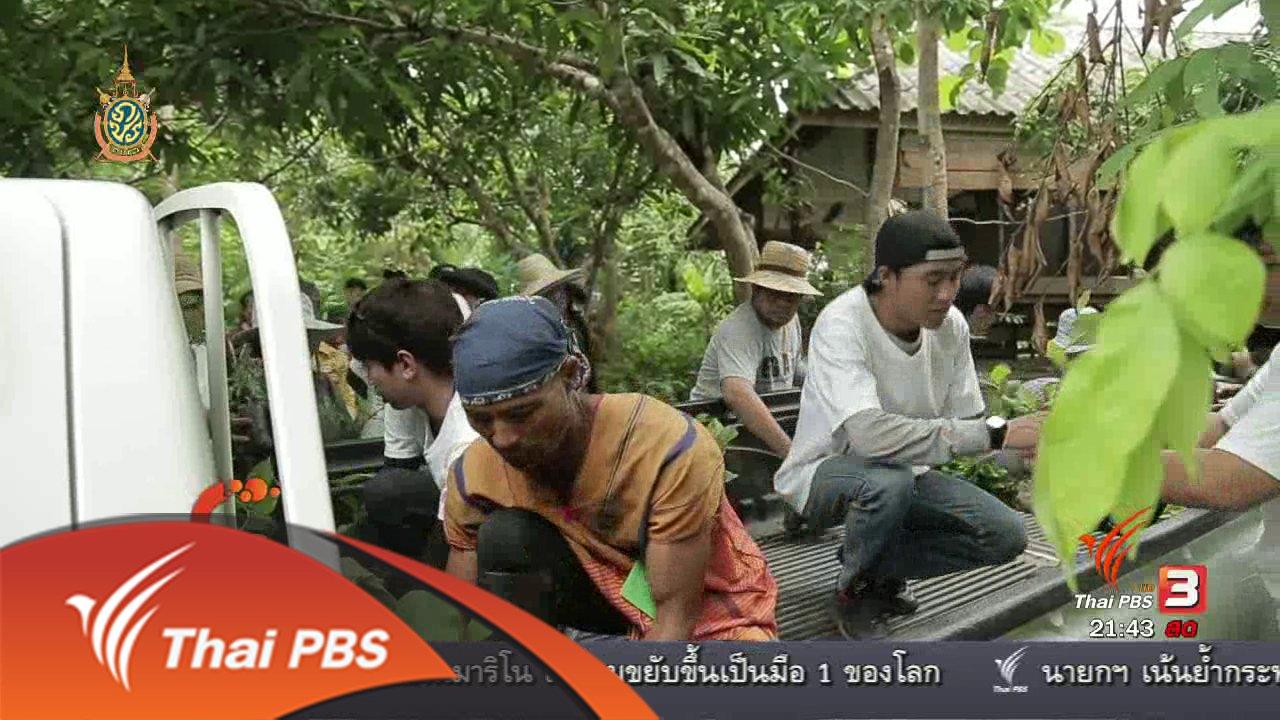"""ที่นี่ Thai PBS - นักข่าวพลเมือง : ฟื้นฟูป่าต้นน้ำแม่ปิง """"เติมต้นไม้ให้ป่าว่าง"""" จ.เชียงใหม่"""