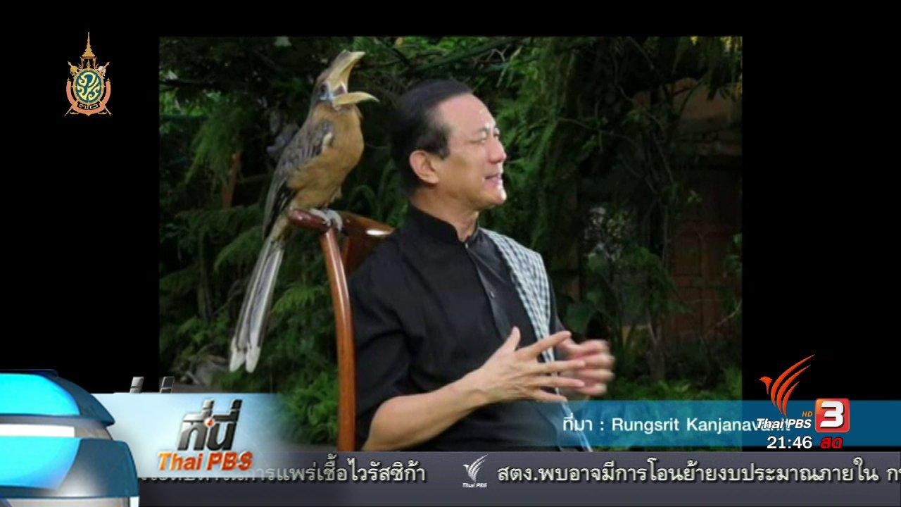 ที่นี่ Thai PBS - ที่นี่ Thai PBS : เตรียมขอหมายศาลตรวจค้นนกเงือก