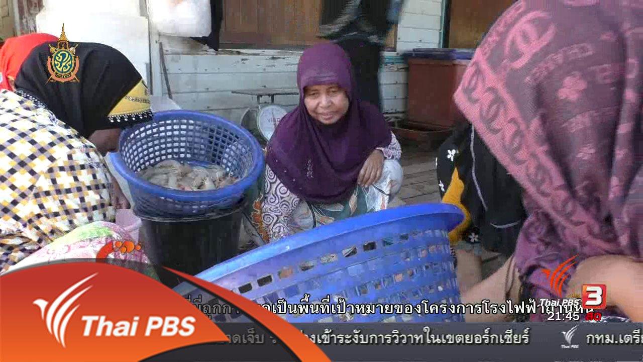 ที่นี่ Thai PBS - นักข่าวพลเมือง : คนจับกุ้ง จ.กระบี่