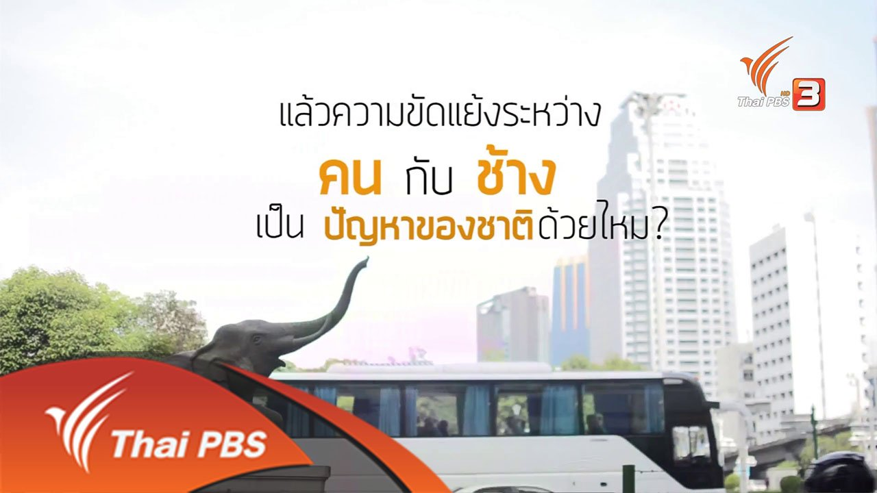 Backpack Journalist - คน-ป่า-ช้าง