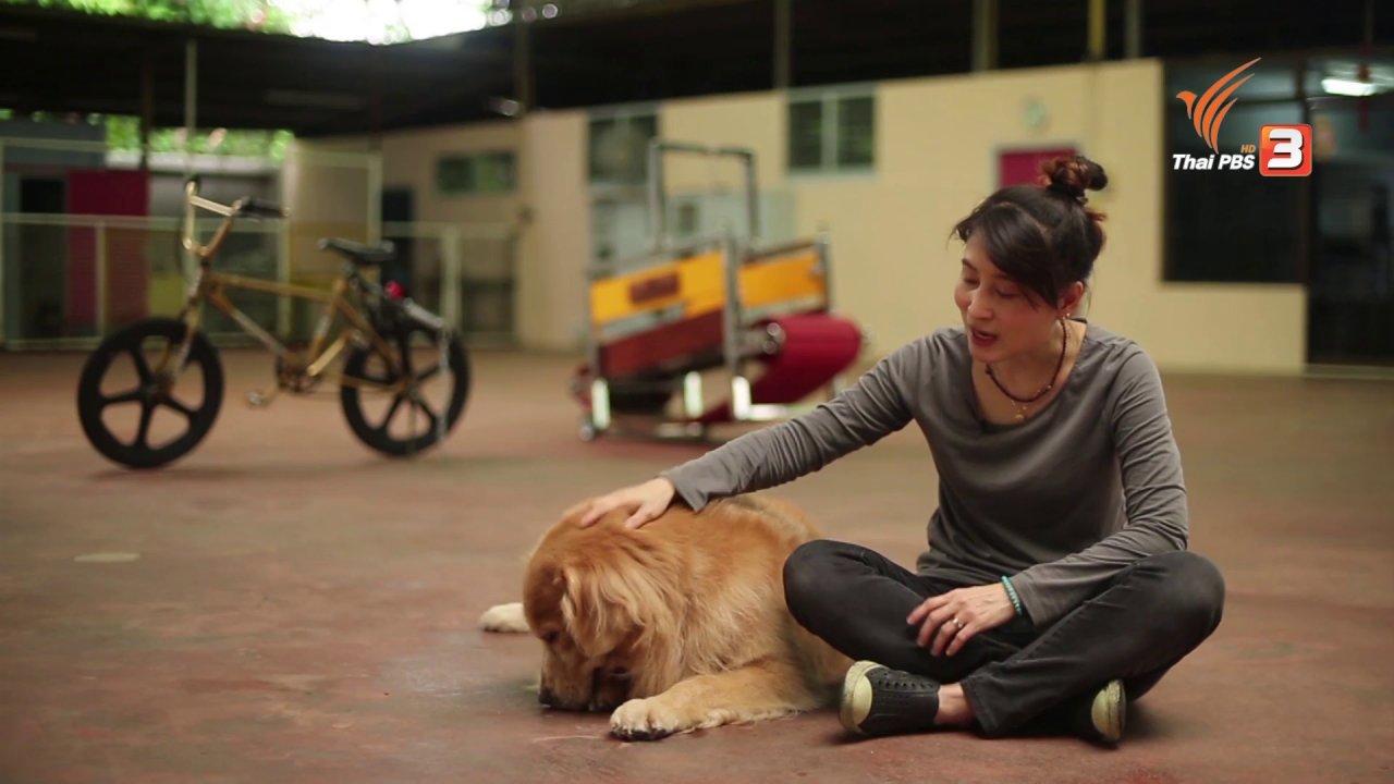 ลุยไม่รู้โรย สูงวัยดี๊ดี - ลุยไม่รู้โรย สูงวัยดี๊ดี (ห้องเรียน สว.) : วิธีการฝึกสอนให้สุนัขปฏิบัติตามคำสั่ง