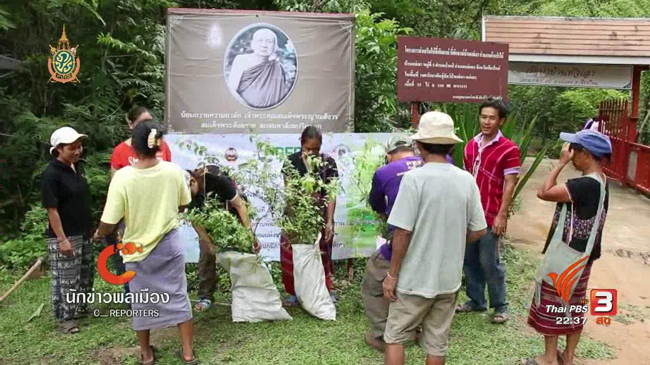 ที่นี่ Thai PBS - นักข่าวพลเมือง : ร่วมดูแลป่าต้นน้ำ บ้านหัวเสา จ.เชียงใหม่