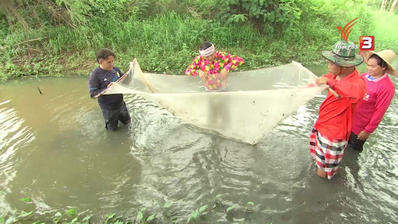 ข่าวค่ำ มิติใหม่ทั่วไทย - ตะลุยทั่วไทย : ก้อยปลาซิว