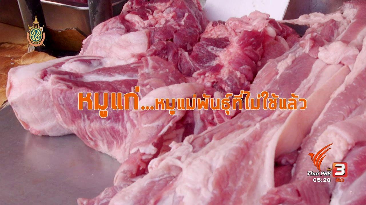 วันใหม่  ไทยพีบีเอส - สายสืบเจาะตลาด : ราคาเนื้อหมู