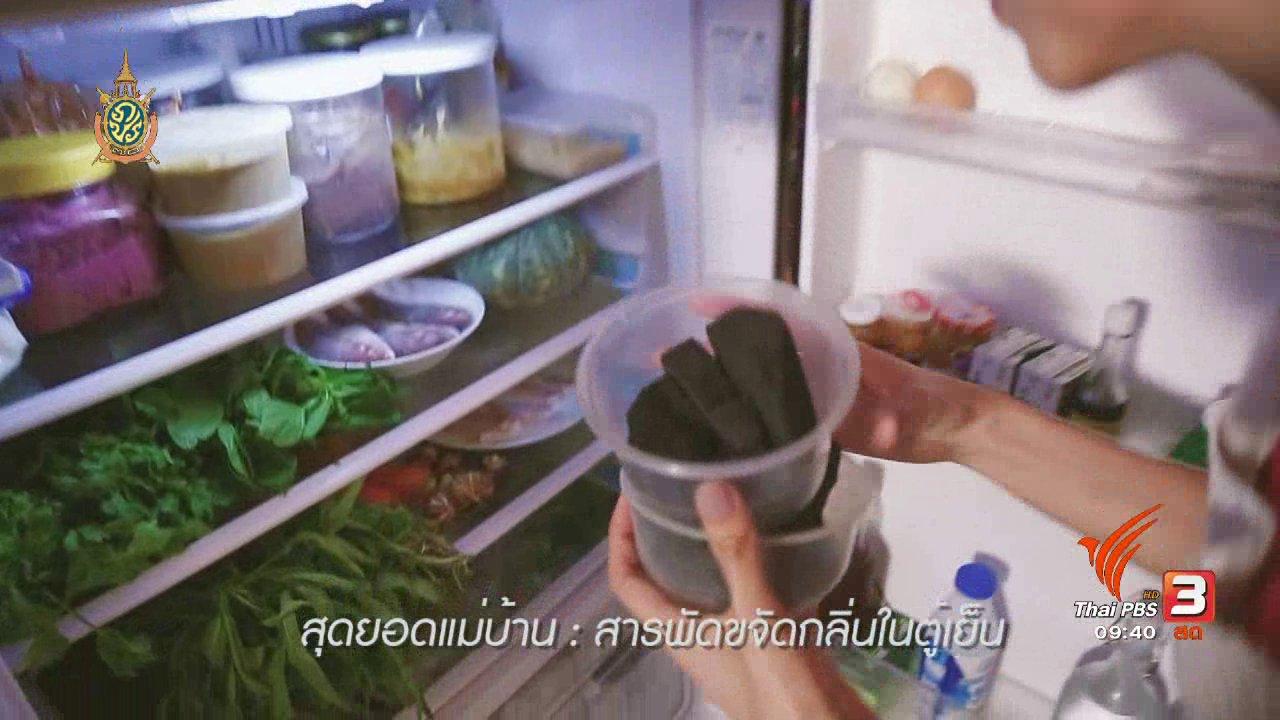 นารีกระจ่าง - สุดยอดแม่บ้าน : สารพัดวิธีกำจัดกลิ่นในตู้เย็น