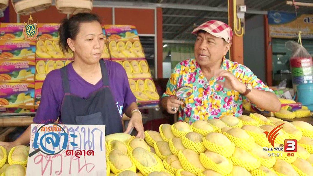 วันใหม่  ไทยพีบีเอส - สายสืบเจาะตลาด : ราคามะม่วง