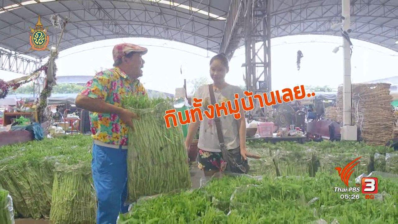 วันใหม่  ไทยพีบีเอส - สายสืบเจาะตลาด : ราคาผัก