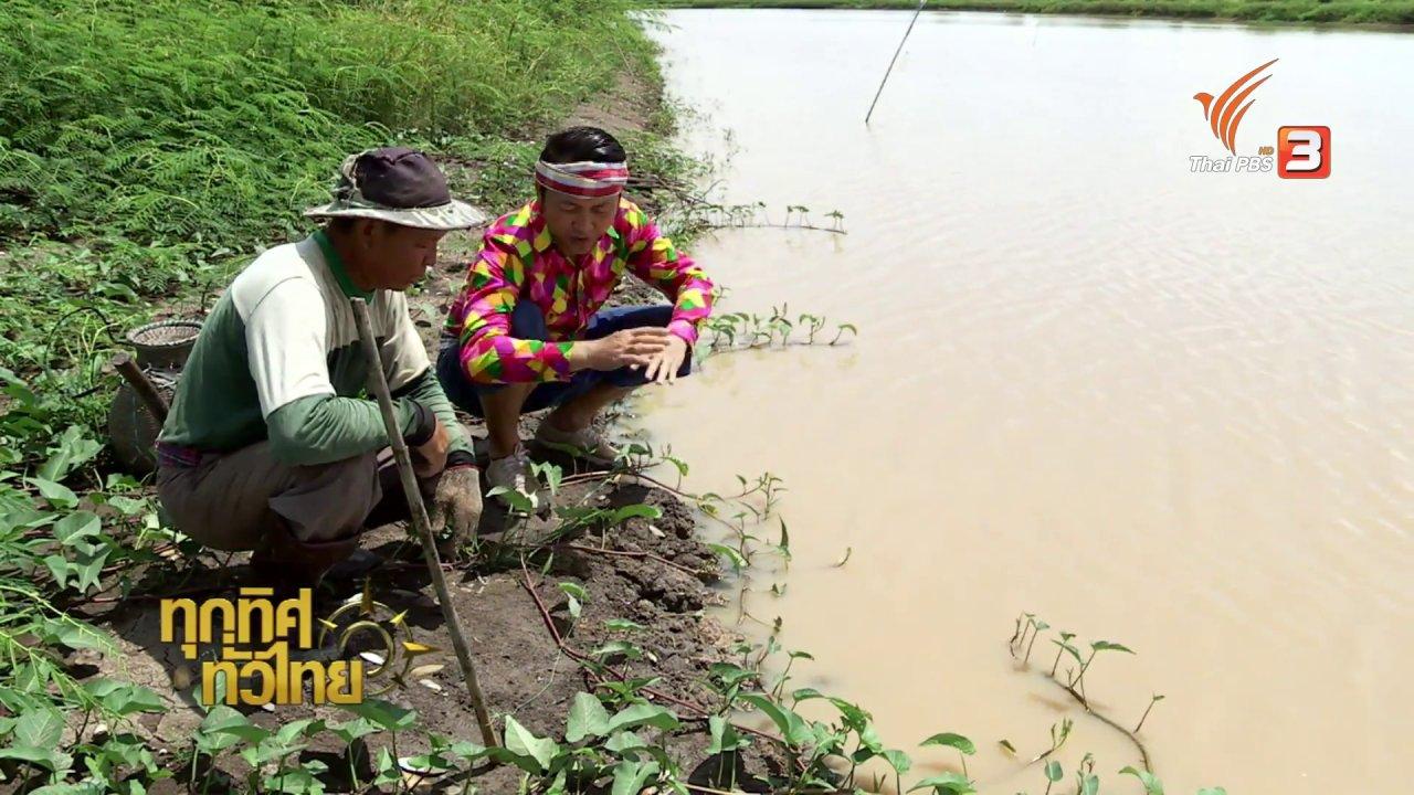 ทุกทิศทั่วไทย - วิถีทั่วไทย : อาหารพื้นบ้านจากปลาไหล อ.แม่จัน จ.เชียงราย