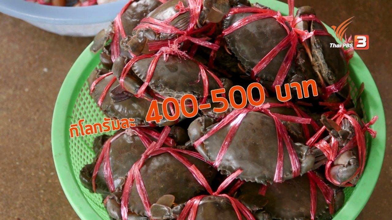 วันใหม่  ไทยพีบีเอส - สายสืบเจาะตลาด : สำรวจราคาอาหารทะเล