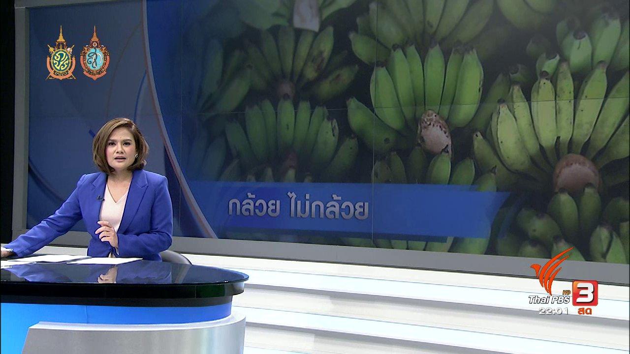 ที่นี่ Thai PBS - ที่นี่ Thai PBS : วิกฤตกล้วยแพง กระทบผู้ค้ากล้วยทอด กล้วยทับ