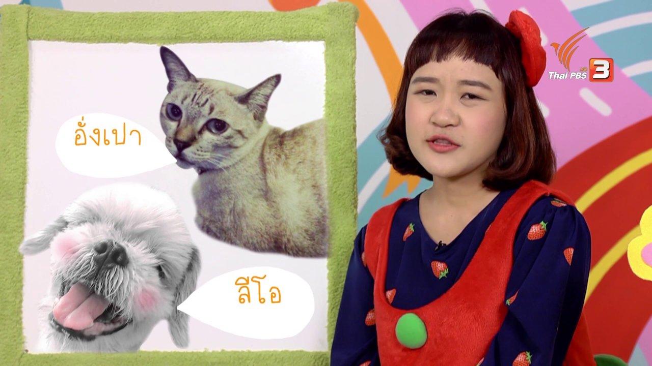 ขบวนการ Fun น้ำนม - ขบวนการ Fun น้ำนม  : พี่เอมวาดรูปแมว