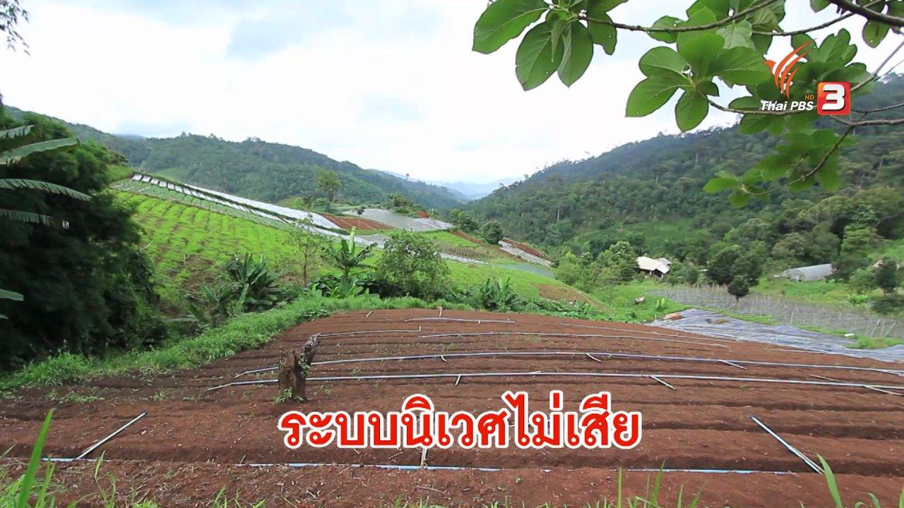 ดูให้รู้ - เกษตรกรไทย บุกไปญี่ปุ่น ตอน 1