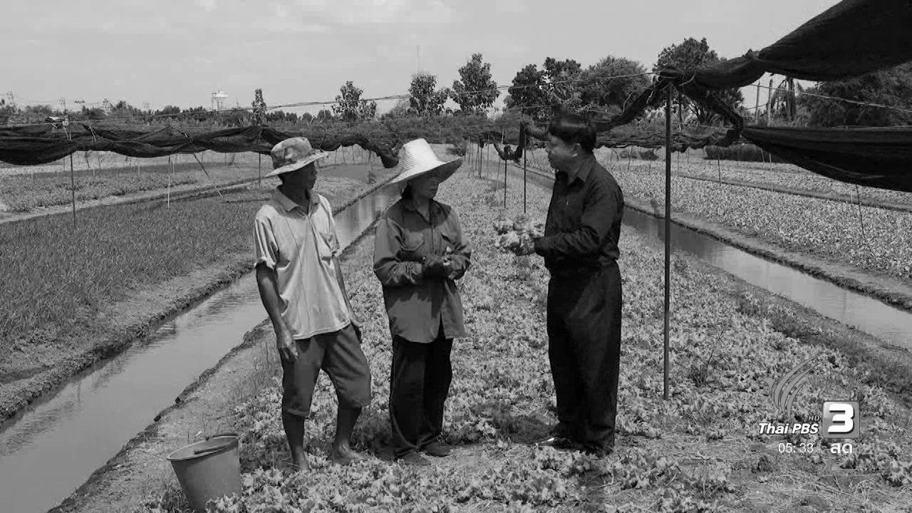 วันใหม่  ไทยพีบีเอส - สายสืบเจาะตลาด : เกษตรกรผู้น้อมนำปรัชญาเศรษฐกิจพอเพียงมาปรับใช้
