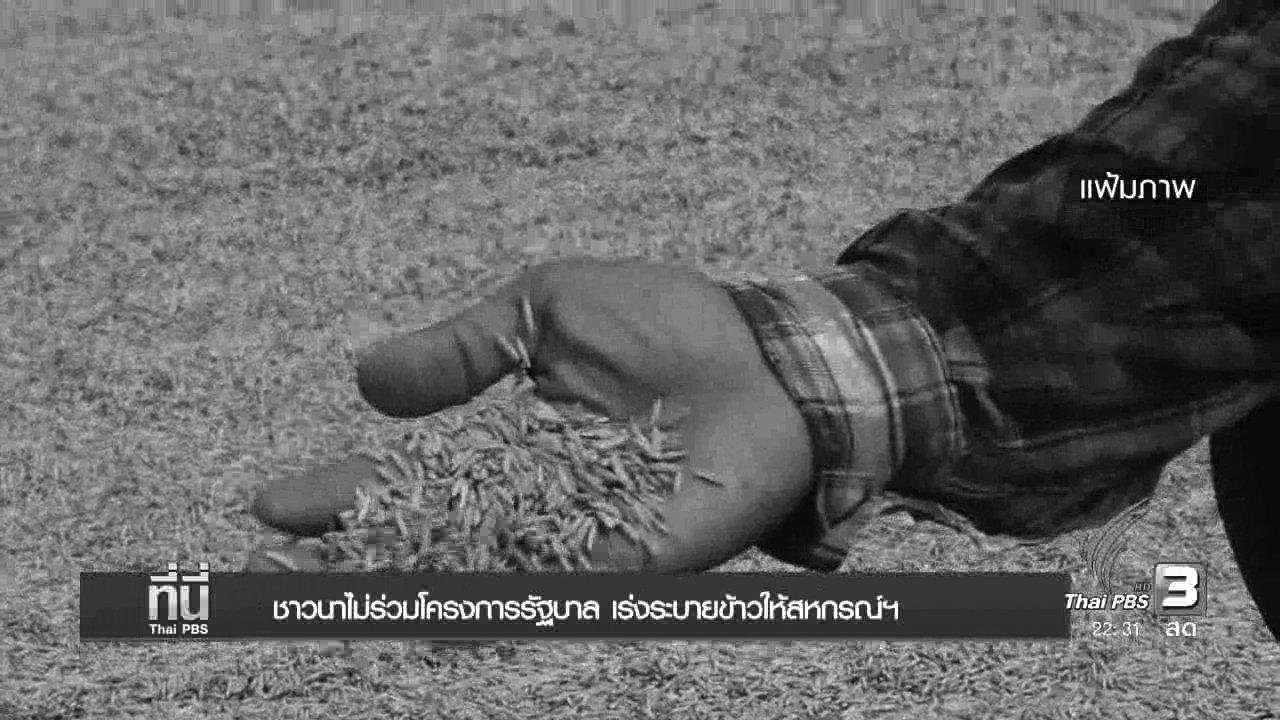 ที่นี่ Thai PBS - ชาวนาไม่ร่วมโครงการรัฐบาล เร่งระบายข้าวให้สหกรณ์