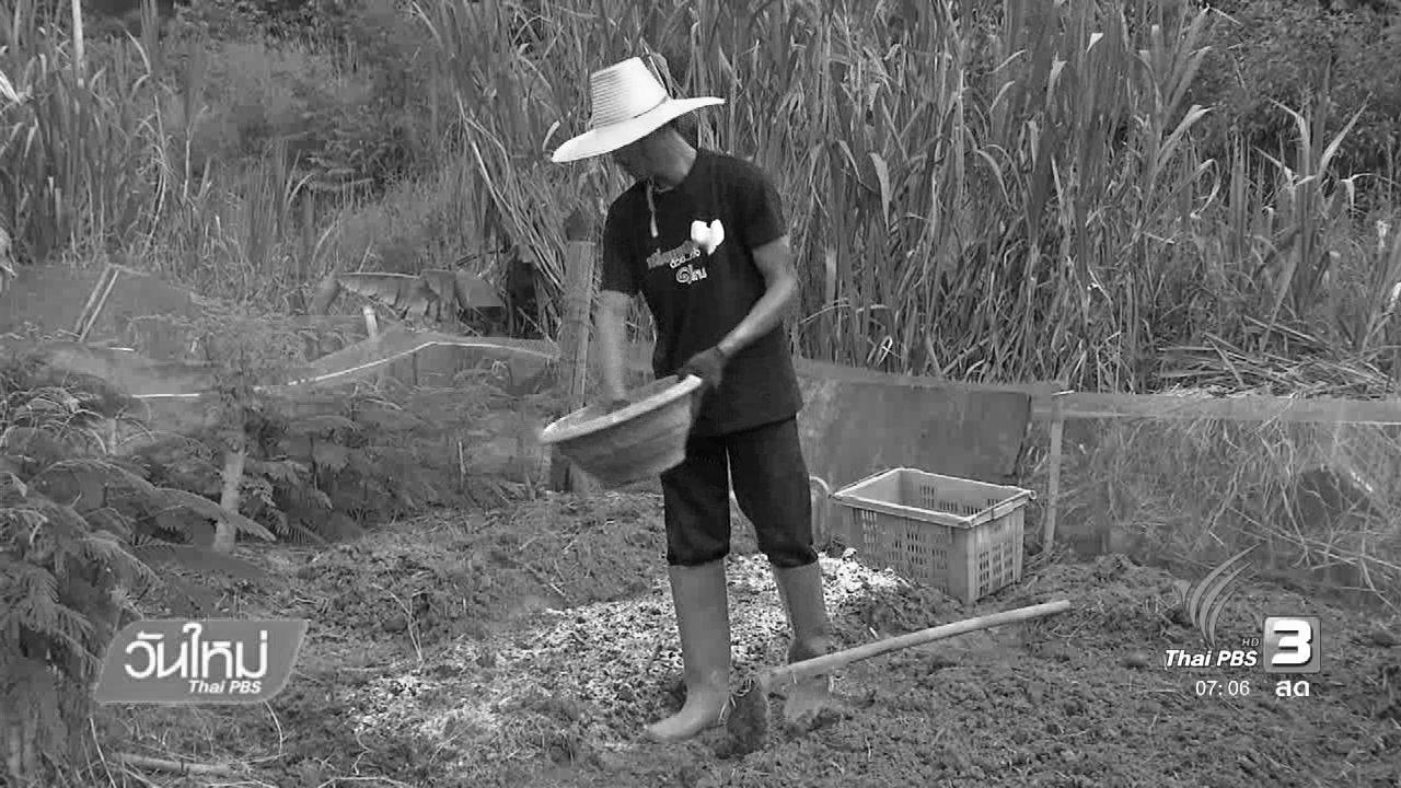 วันใหม่  ไทยพีบีเอส - โครงการพระราชดำริแก้ปัญหาเรื่องดิน