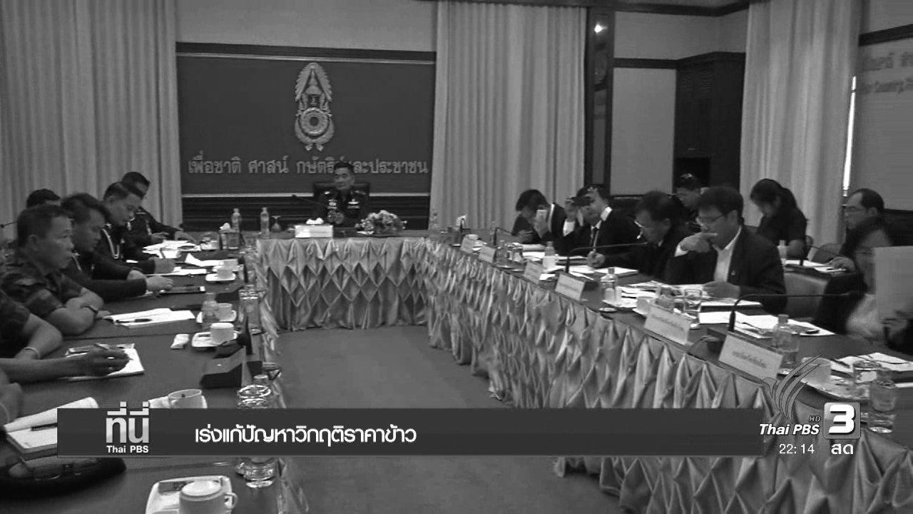 ที่นี่ Thai PBS - เร่งแก้ปัญหาวิกฤติราคาข้าว