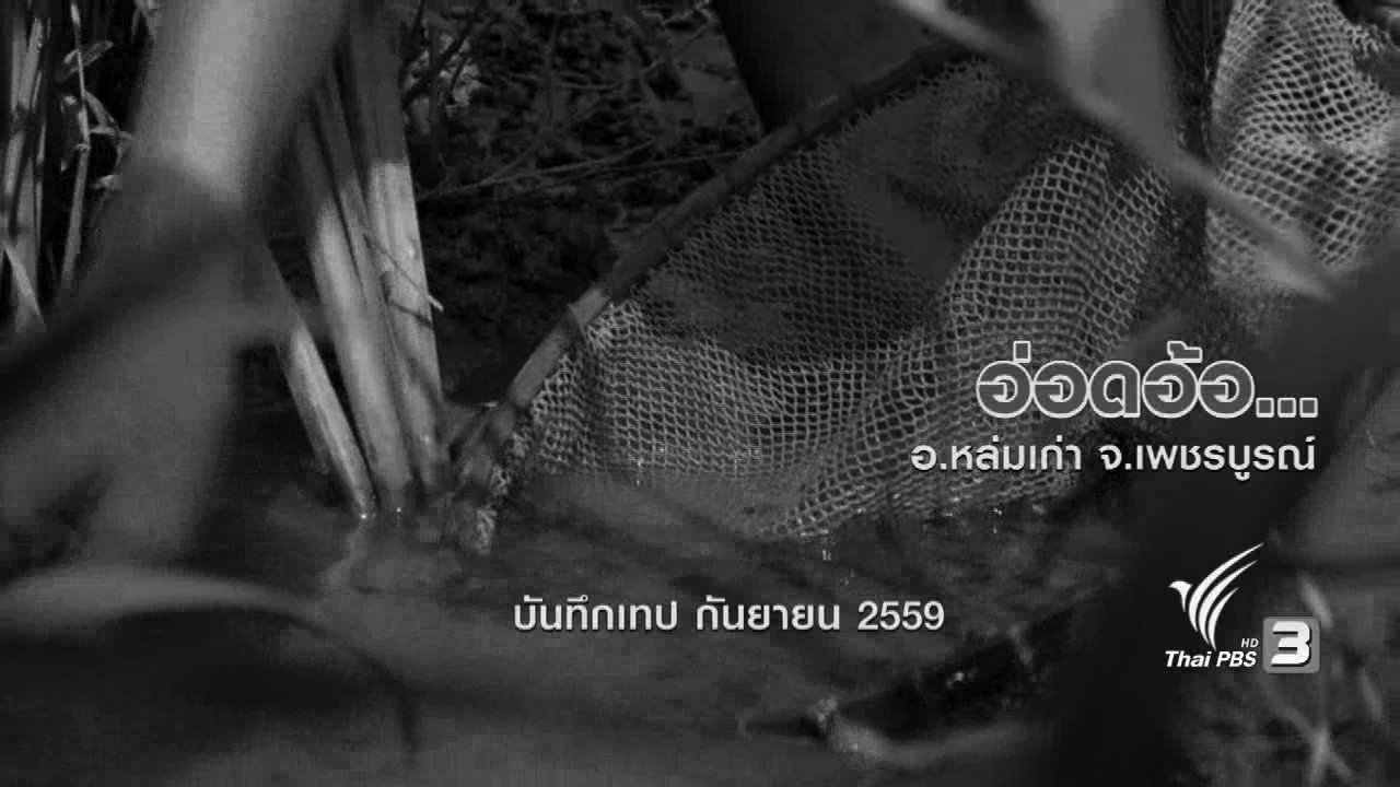 ข่าวค่ำ มิติใหม่ทั่วไทย - ตะลุยทั่วไทย : อ่อดอ้อ
