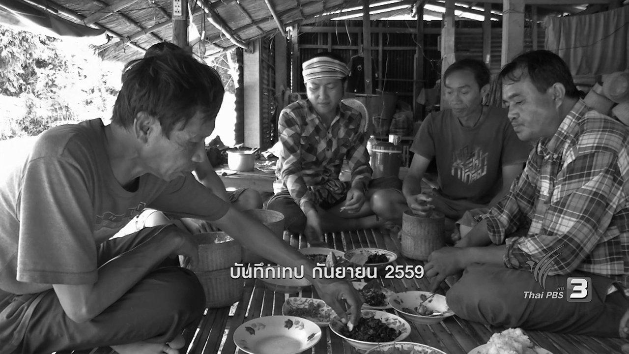 ข่าวค่ำ มิติใหม่ทั่วไทย - ค้างคาวแดง