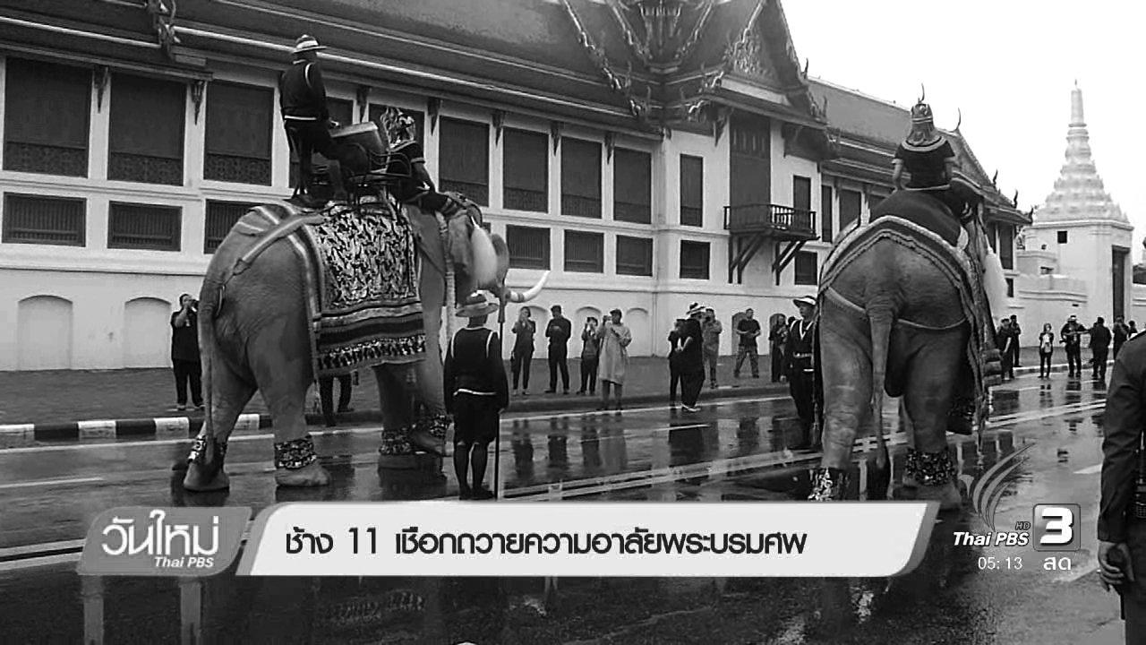 วันใหม่  ไทยพีบีเอส - ช้าง 11 เชือกถวายความอาลัยพระบรมศพ