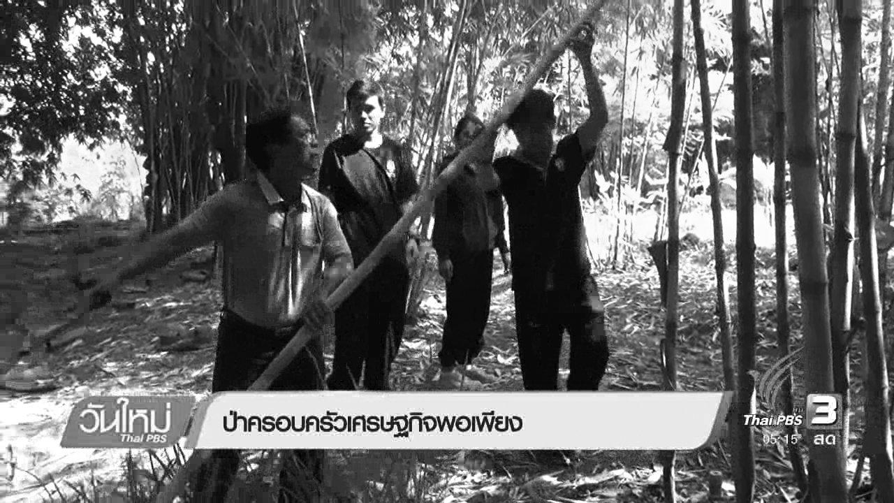 วันใหม่  ไทยพีบีเอส - ป่าครอบครัวเศรษฐกิจพอเพียง