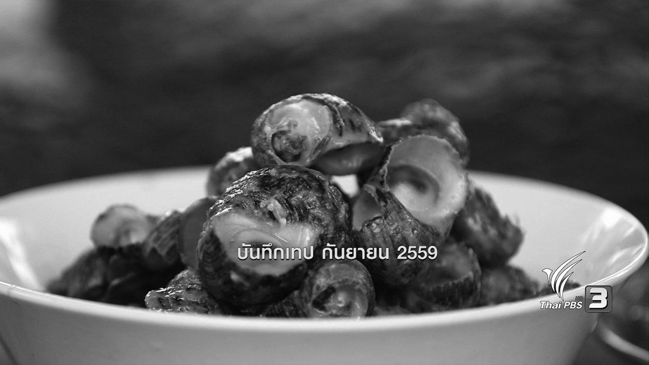 ข่าวค่ำ มิติใหม่ทั่วไทย - หอยขมทะเล