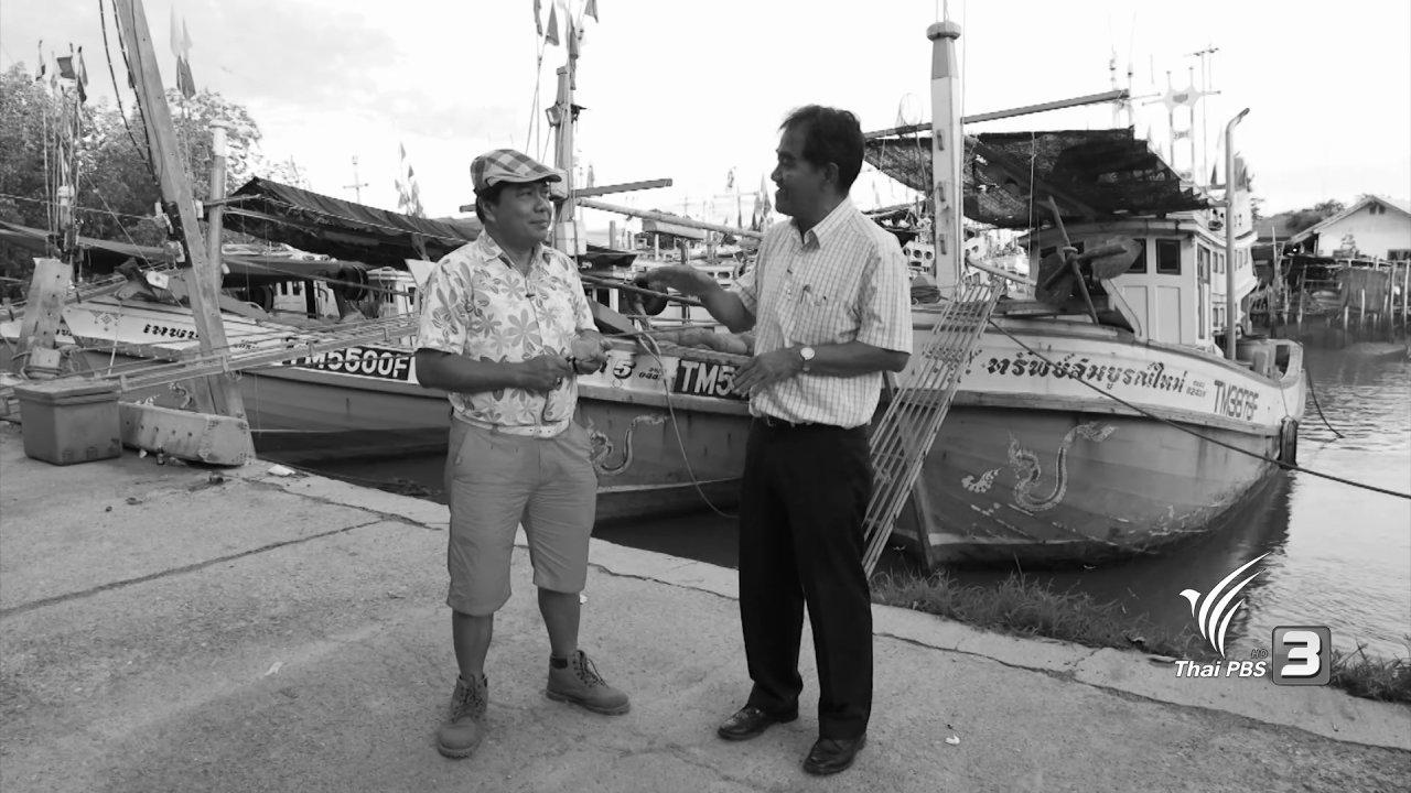 วันใหม่  ไทยพีบีเอส - สำรวจราคาอาหารทะเล จ.เพชรบุรี