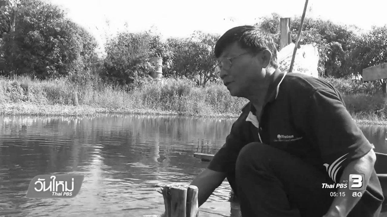 วันใหม่  ไทยพีบีเอส - เกษตรกรอ่างทองเดินตามแนวเศรษฐกิจพอเพียง