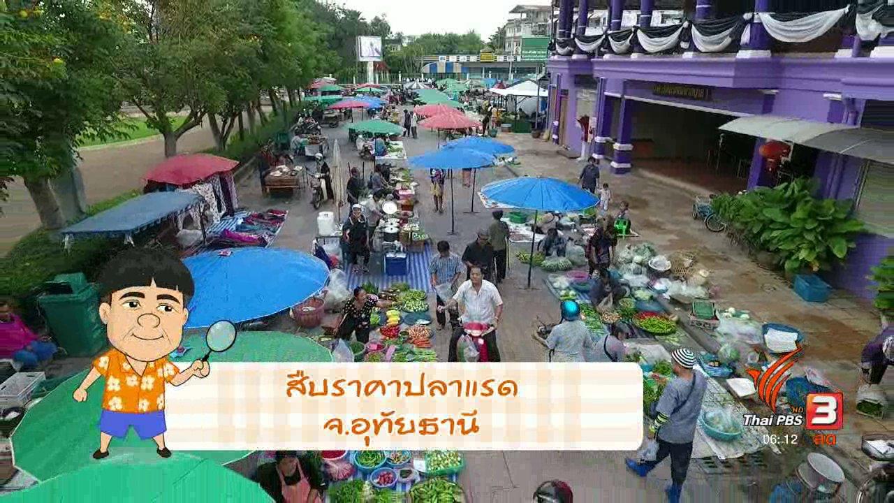 วันใหม่  ไทยพีบีเอส - สายสืบเจาะตลาด : สำรวจราคาปลาแรด จากกระชัง จ.อุทัยธานี