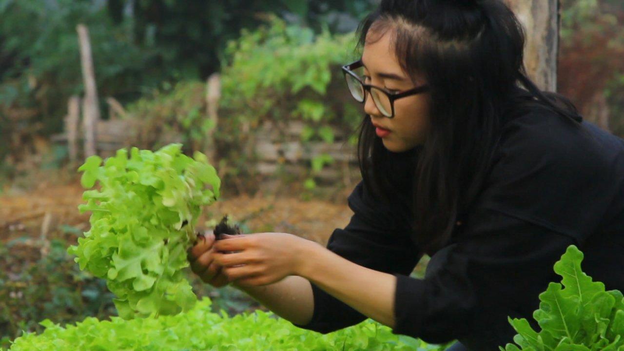 The North องศาเหนือ - คนรุ่นใหม่ หัวใจเกษตร