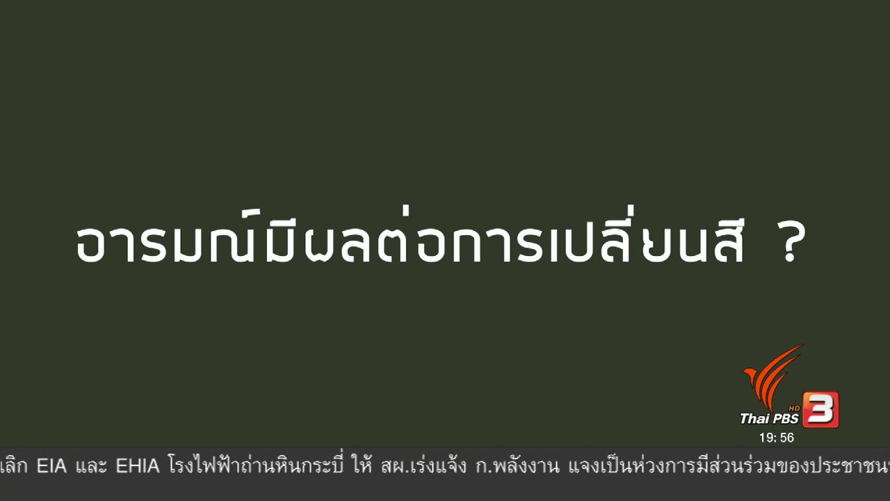 ข่าวค่ำ มิติใหม่ทั่วไทย - soเชี่ยว FAKE or FACT : คามิเลี่ยนเปลี่ยนสีตามอารมณ์จริงหรือไม่