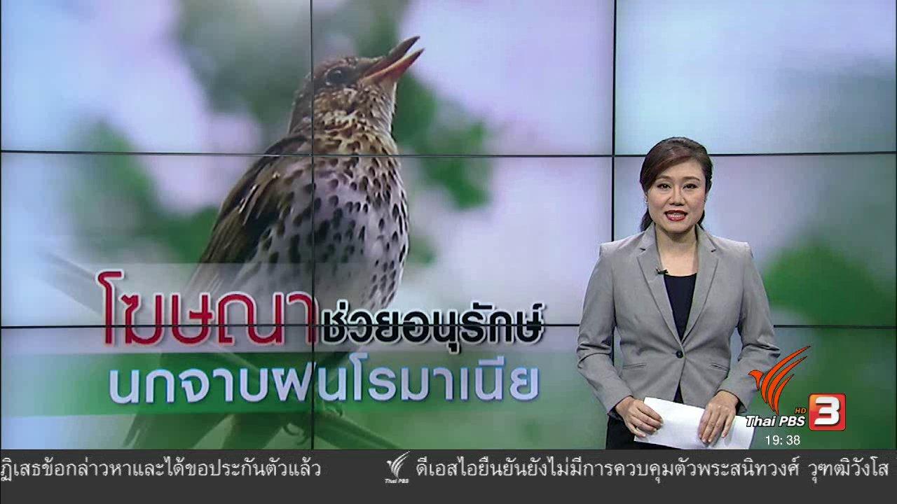 ข่าวค่ำ มิติใหม่ทั่วไทย - วิเคราะห์สถานการณ์ต่างประเทศ : โฆษณาช่วยอนุรักษ์นกจาบฝนโรมาเนีย