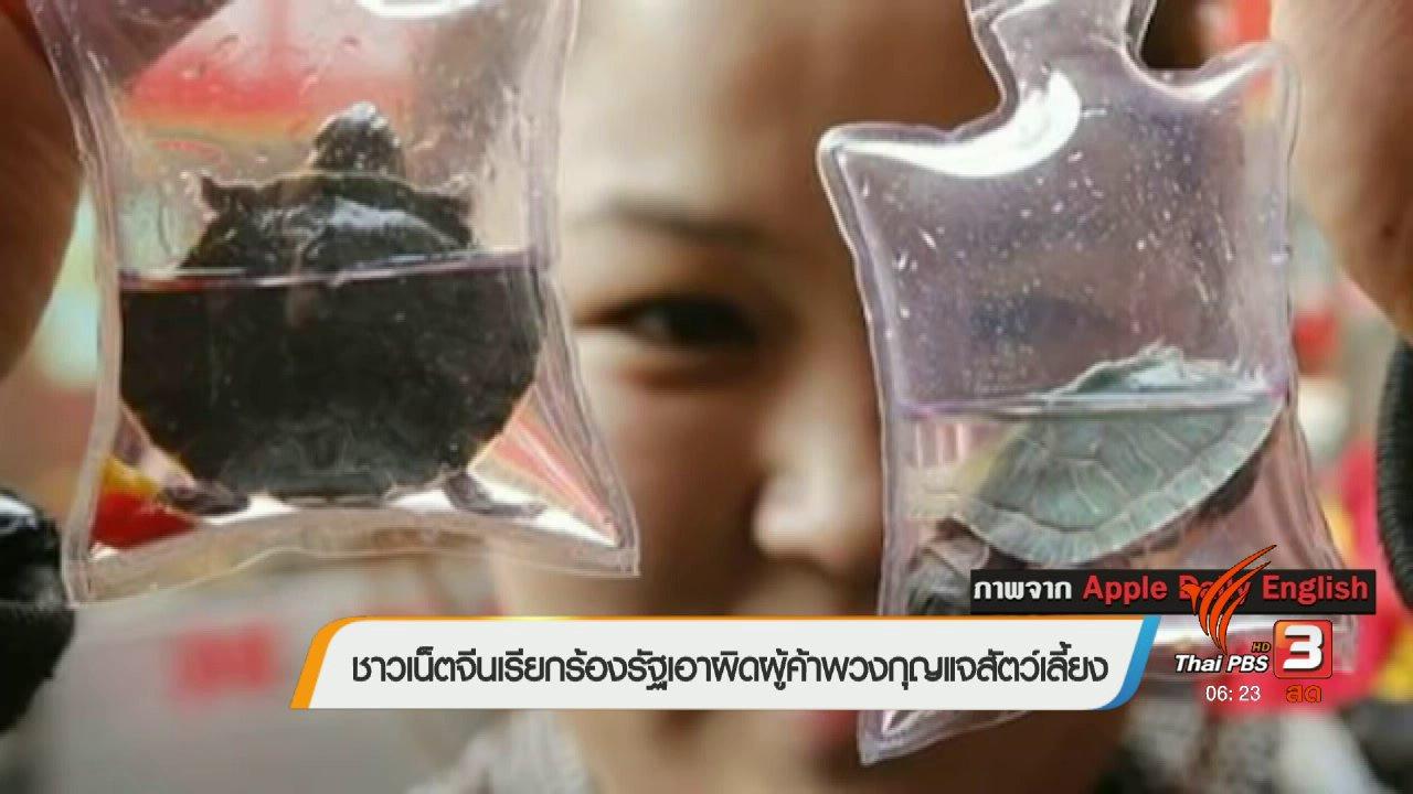 วันใหม่  ไทยพีบีเอส - คลิกให้ปัง : ชาวเน็ตจีนเรียกร้องรัฐเอาผิดผู้ค้าพวงกุญแจสัตว์เลี้ยง