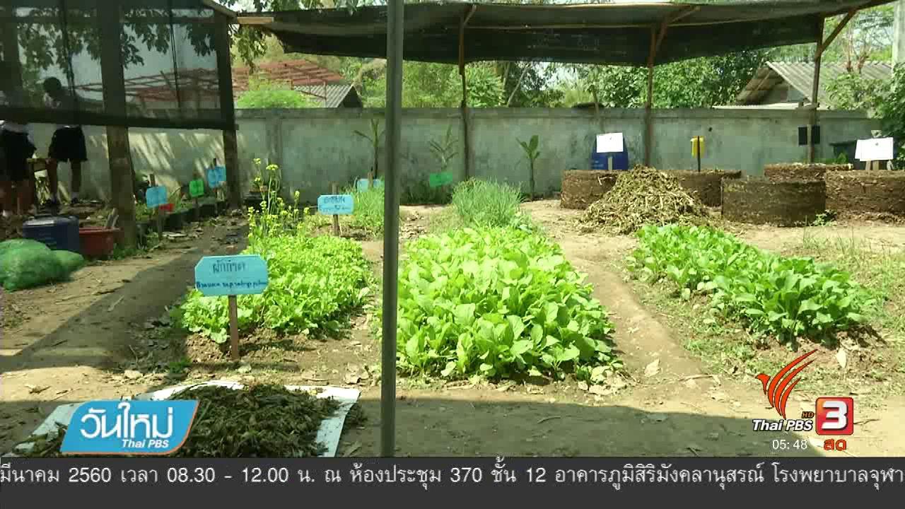 วันใหม่  ไทยพีบีเอส - เก็บผักตบชวาทำปุ๋ยหมักฟื้นฟูคลองแม่ข่า