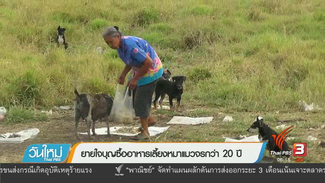 วันใหม่  ไทยพีบีเอส - ยายใจบุญซื้ออาหารเลี้ยงหมาแมวจรกว่า 20 ปี