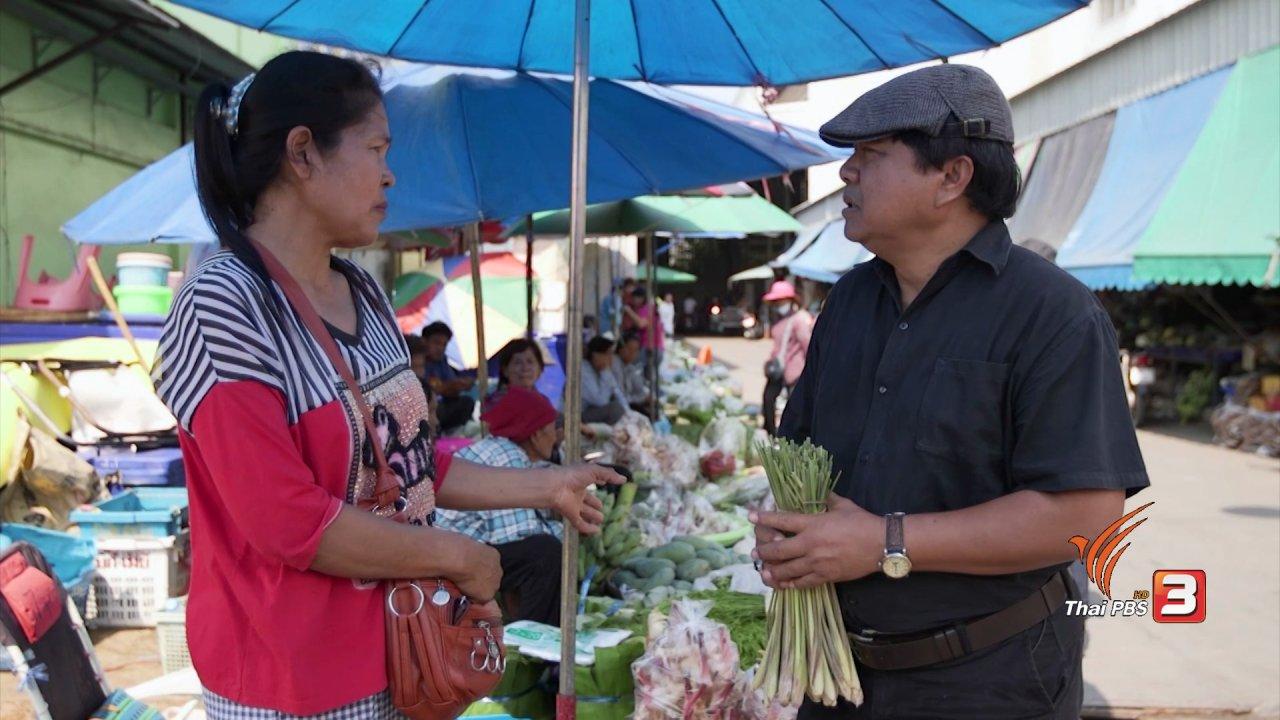 วันใหม่  ไทยพีบีเอส - สายสืบเจาะตลาด : สืบราคาข่า อ.โพธิ์ทอง จ.อ่างทอง