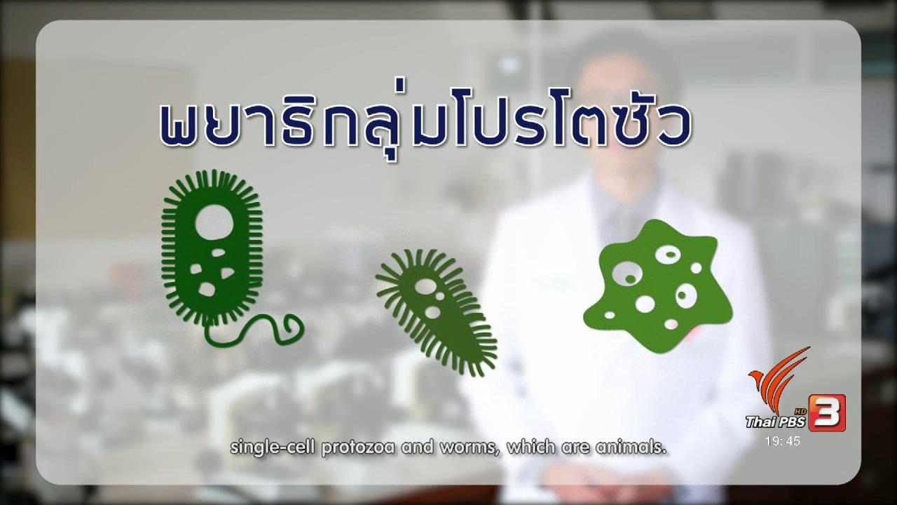 ข่าวค่ำ มิติใหม่ทั่วไทย - soเชี่ยว FAKE or FACT : พยาธิทางเดินอาหารมีส่วนทำให้น้ำหนักลดจริงหรือไม่