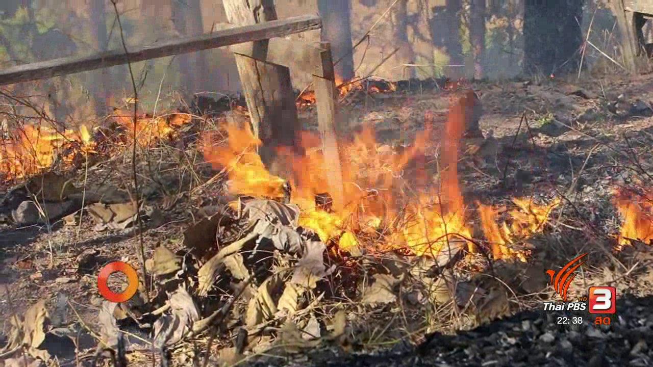ที่นี่ Thai PBS - นักข่าวพลเมือง : ปันน้ำใจ ดับไฟป่า ลดปัญหาหมอกควัน จ.เชียงใหม่