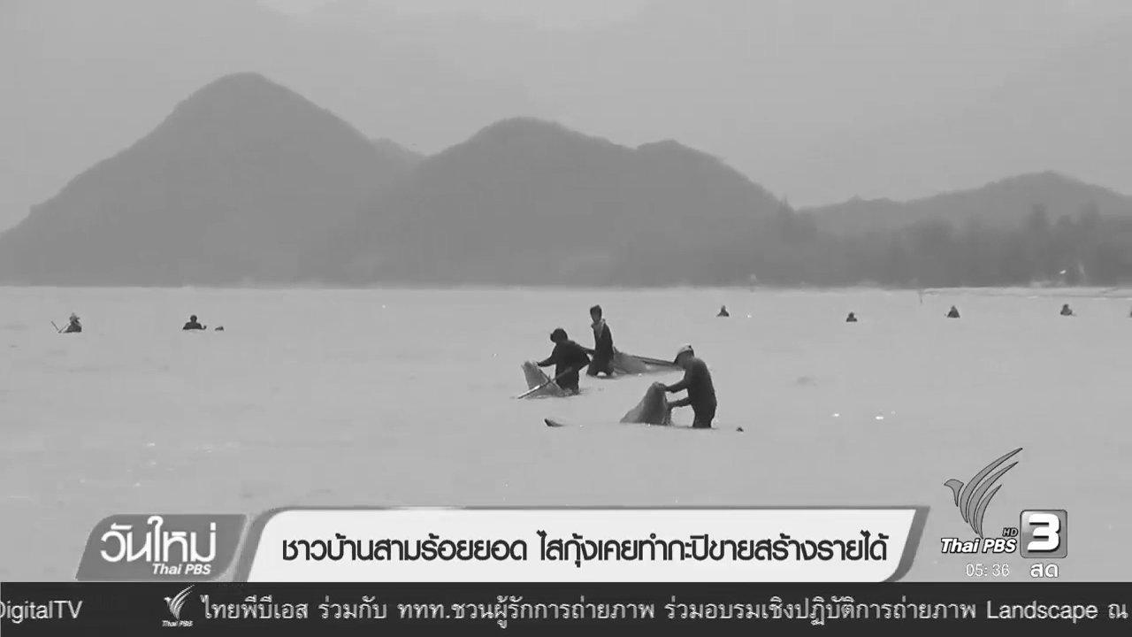วันใหม่  ไทยพีบีเอส - ชาวบ้านสามร้อยยอด ไสกุ้งเคยทำกะปิสร้างรายได้