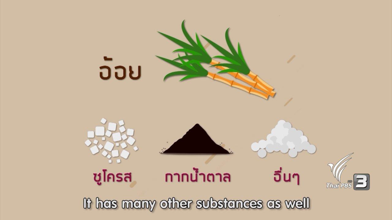 ข่าวค่ำ มิติใหม่ทั่วไทย - น้ำตาลทรายแดงมีปริมาณแคลอรีน้อยกว่าน้ำตาลทรายขาวจริงหรือไม่