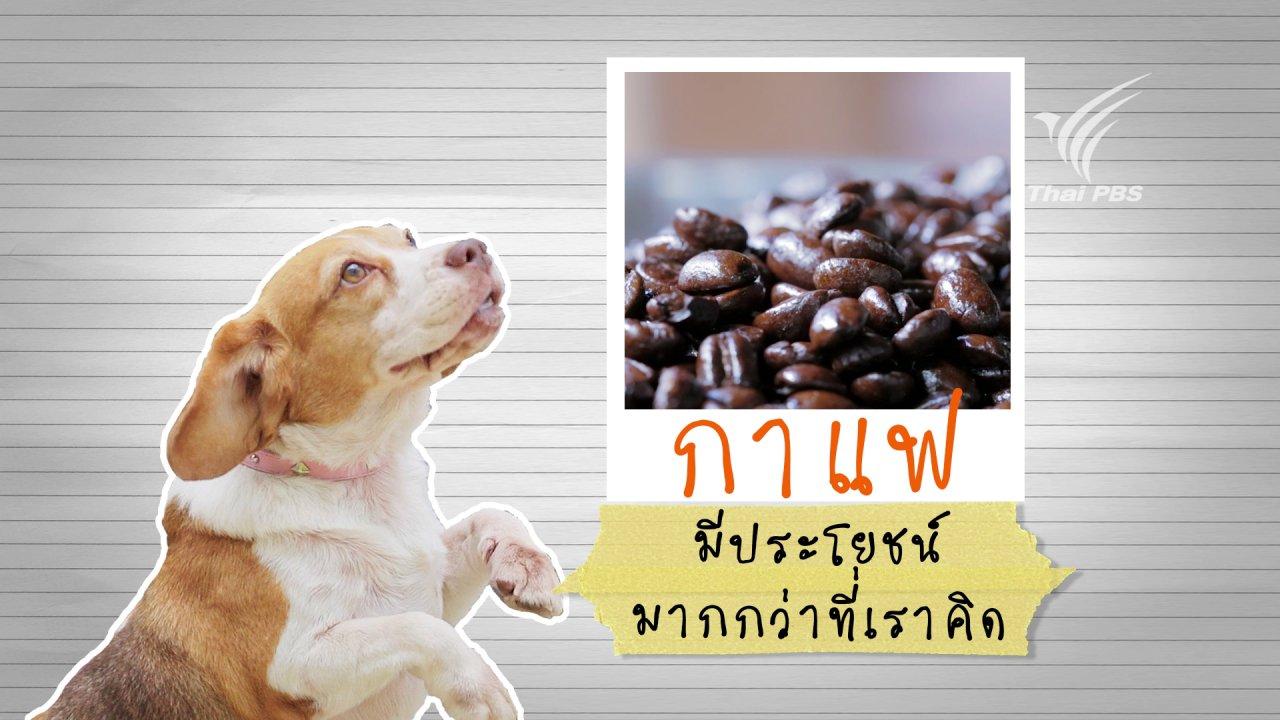 Foodwork - กาแฟ มีประโยชน์มากกว่าที่เราคิด