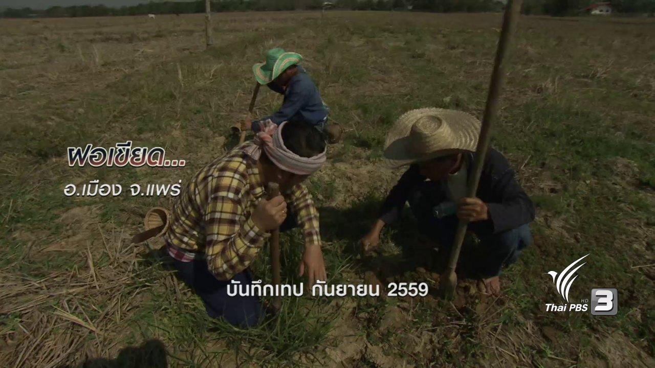 ข่าวค่ำ มิติใหม่ทั่วไทย - ตะลุยทั่วไทย : ฝอเขียด