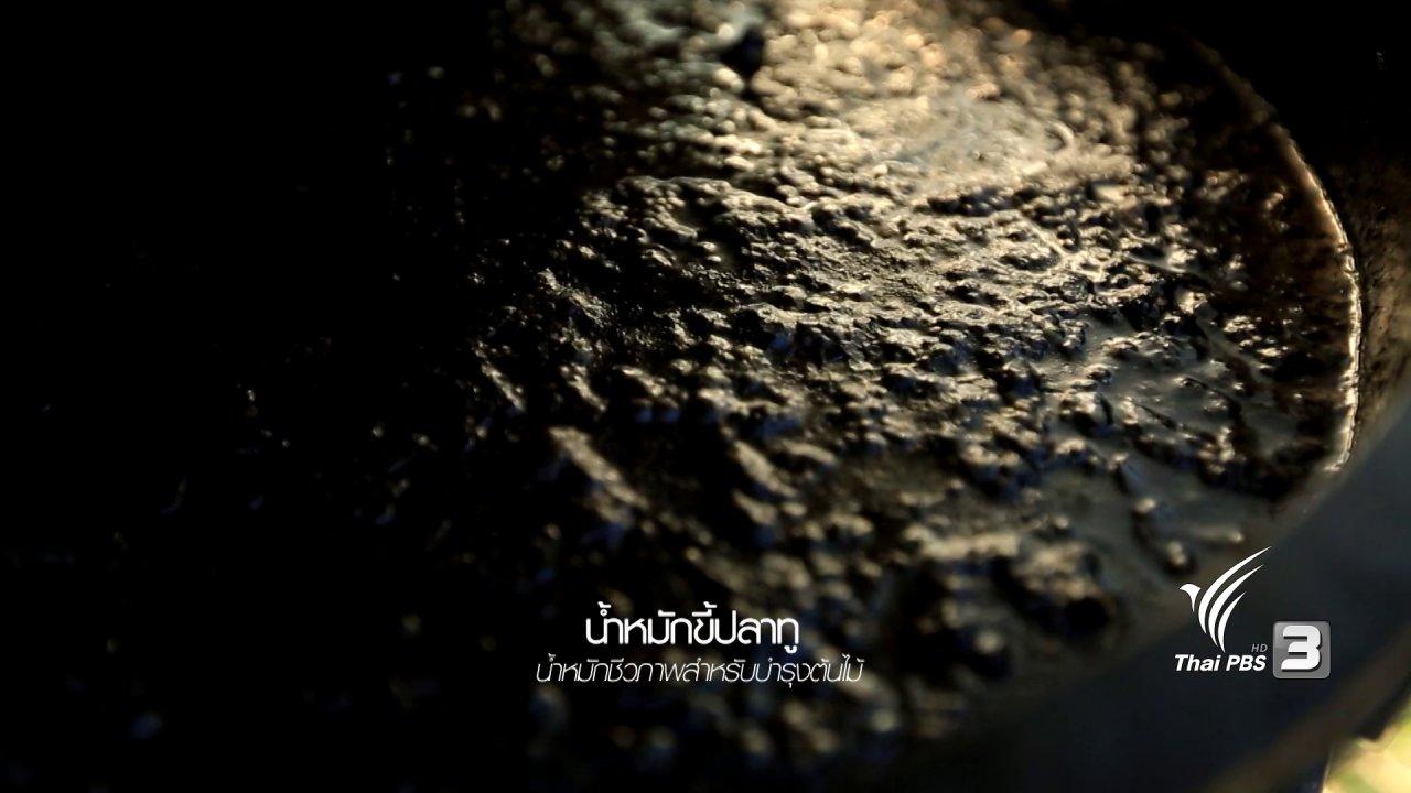 ร่วมฝันเพื่อเมืองไทย - ชุมชนแห่งความยั่งยืน