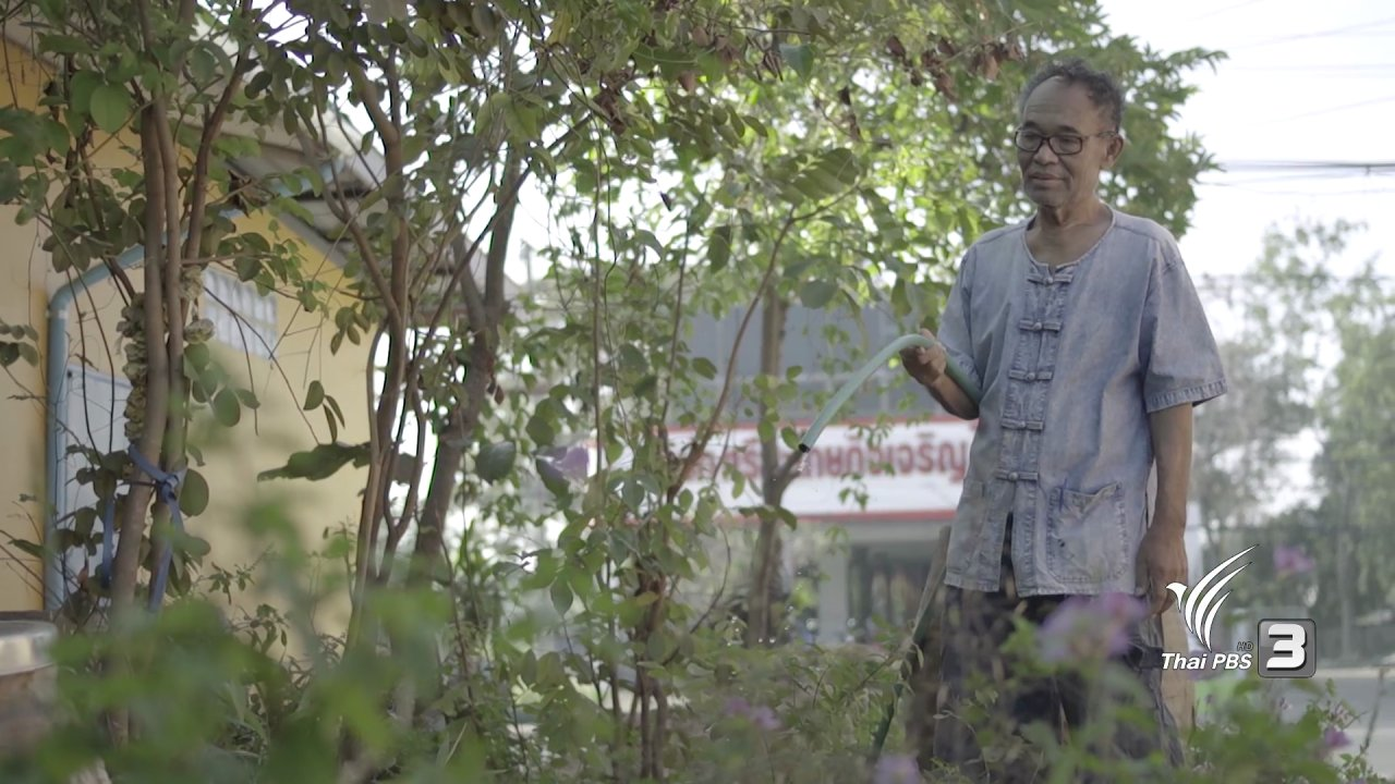 ร่วมฝันเพื่อเมืองไทย - ปณิธานต้นไม้ : ต้นไม้ = เครือข่าย