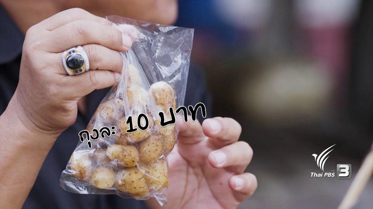 วันใหม่  ไทยพีบีเอส - สายสืบเจาะตลาด : สำรวจราคากันที่ตลาดชุกโดน จ.กาญจนบุรี