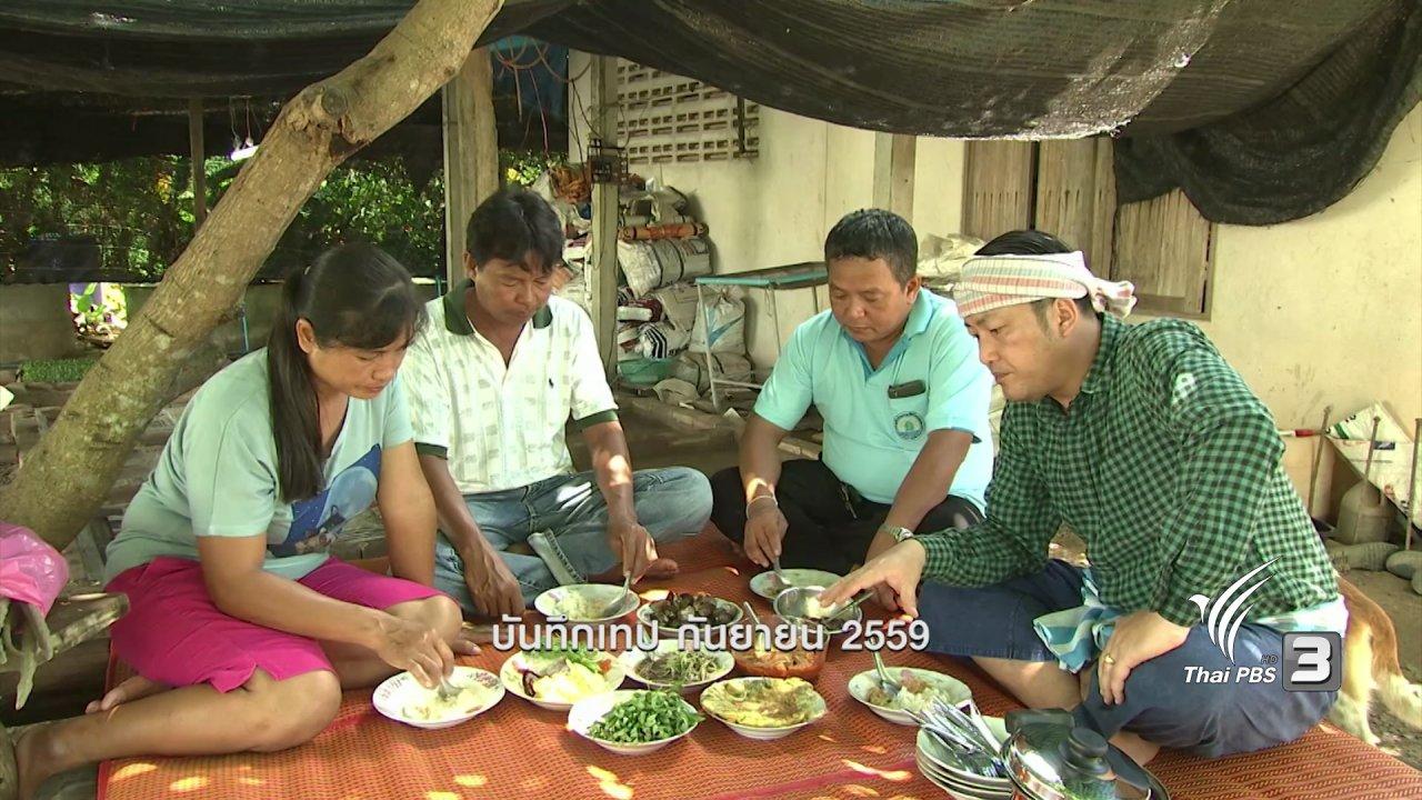 ข่าวค่ำ มิติใหม่ทั่วไทย - ผักกระชับ