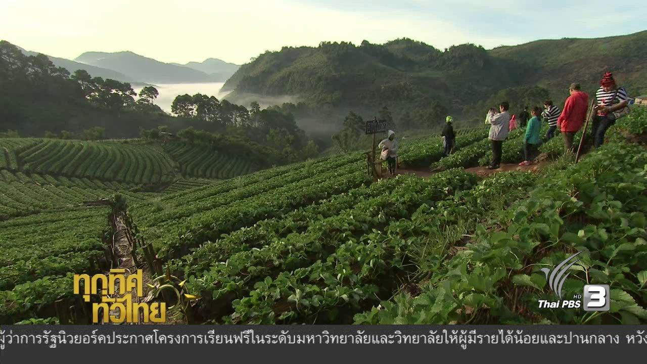 ทุกทิศทั่วไทย - สถานีเกษตรหลวงอ่างขาง จ.เชียงใหม่