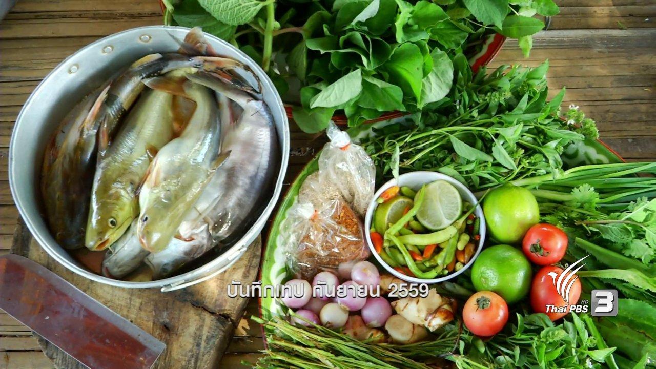 ข่าวค่ำ มิติใหม่ทั่วไทย - ตะลุยทั่วไทย : ปลาเผาะ