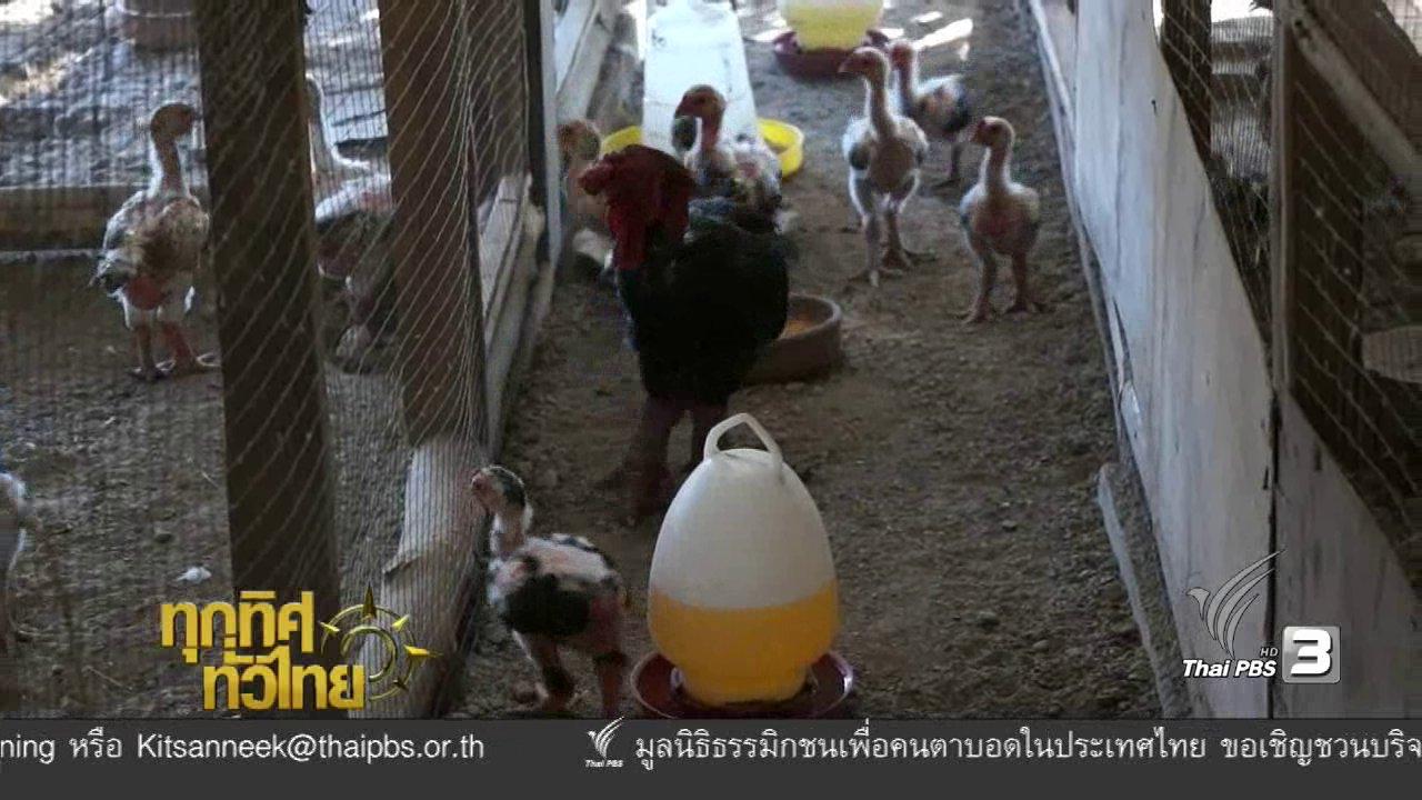ทุกทิศทั่วไทย - ประเด็นข่าว ( 5 ม.ค. 60)